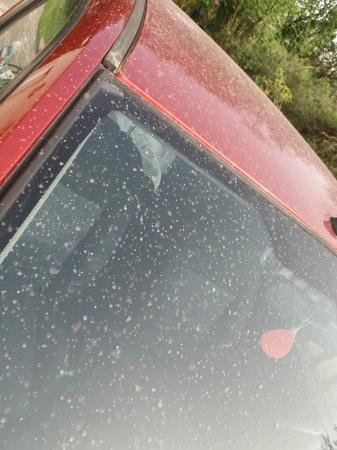 砂目で汚れた車